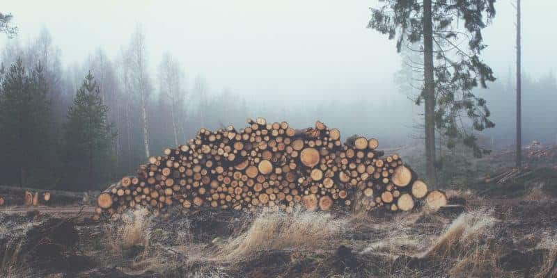 best wood burning kits